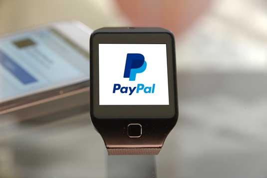 paypal_brand_identity_watch_logo