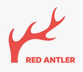 redantler top branding agencies