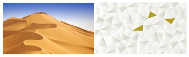 Etihad_rebranding_case_study_the_branding_journal_10